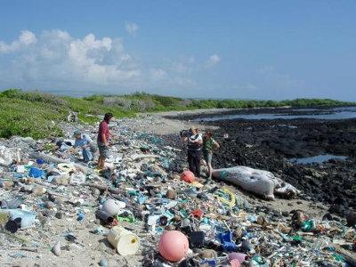 Spazzatura che si accumula a Kamilo Beach nelle Hawaii