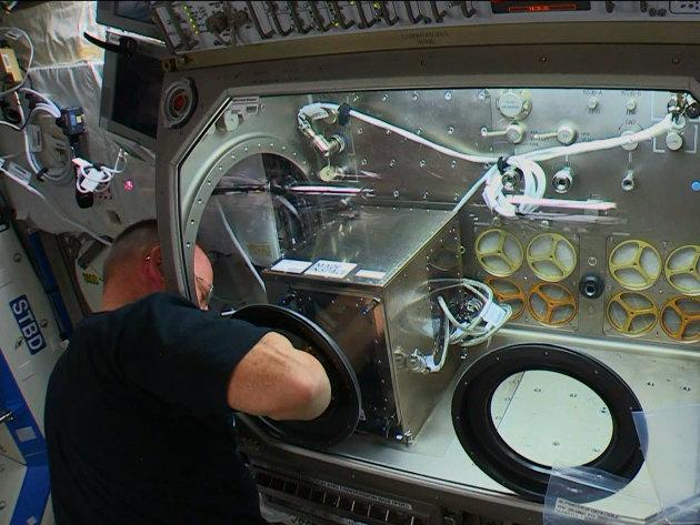 """L'astronauta della NASA Barry """"Butch"""" Wilmore mentre installa la stampante 3D sulla Stazione Spaziale Internazionale (Immagine NASA TV)"""