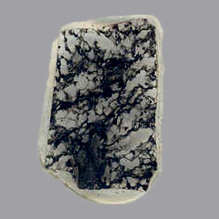 Sezione di roccia contenente fossili di circa 2,3 miliardi di anni fa, visibili nelle aree scure (Immagine cortesia J. William Schopf/UCLA Center for the Study of Evolution and the Origin of Life. Tutti i diritti riservati)