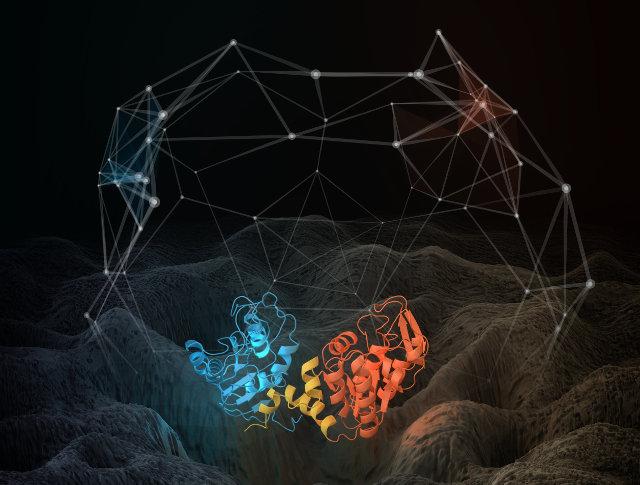 Simulazione della struttura e del movimento della proteina fosfoglicerato chinasi (Immagine cortesia Thomas Splettstoesser; http://www.scistyle.com Tutti i diritti riservati)