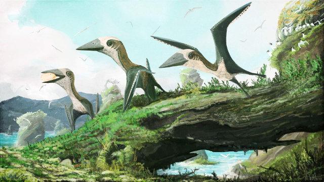 Ricostruzione degli pterosauri azhdarchidi scoperti in Canada (Immagine cortesia Mark Witton)