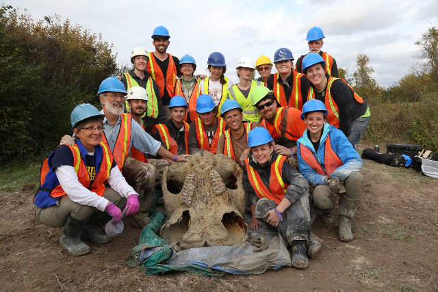 Daniel Fisher e il suo team con il teschio del mastodonte (Foto cortesia Levi Stroud, Michigan News)