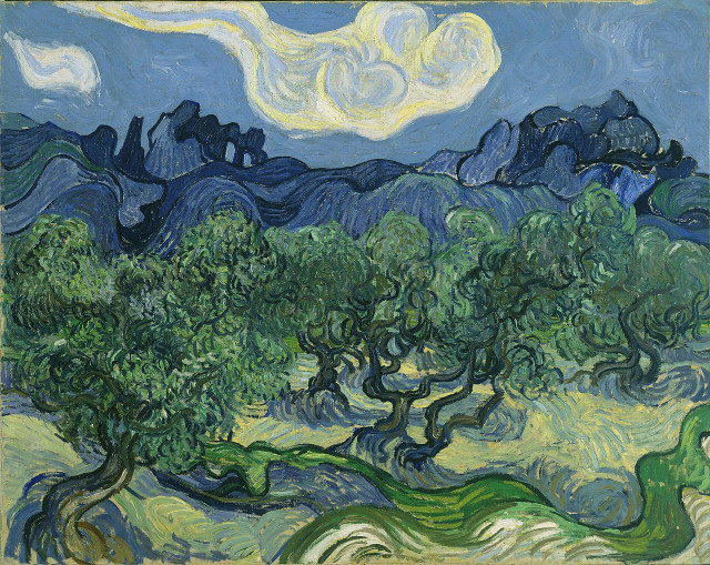 Oliveto con nuvola bianca di Vincent Van Gogh