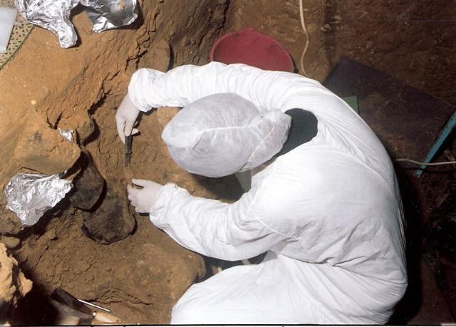 Il prelievo di un campione di sedimenti nel sido di El Sidrón, in Spagna (Foto cortesia del team di ricerca di El Sidrón)
