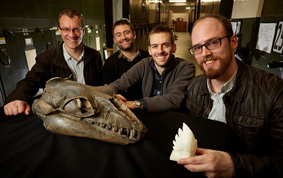I paleontologi di Monash University e Museums Victoria (Foto cortesia Ben Healley, Museums Victoria)