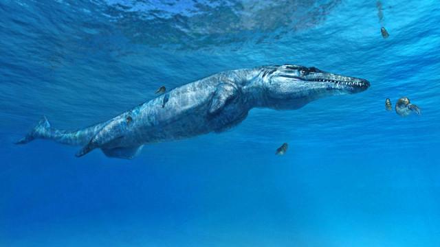 Ricostruzione di Plesiosuchus manselii (Immagine cortesia Fabio Manucci)