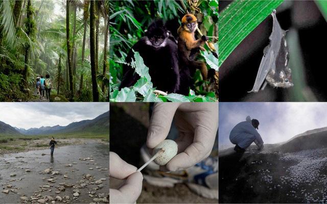 Alcuni ambienti in cui sono stati prelevati microbi