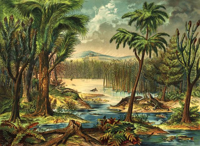 Concetto artistico della foresta pluviale del Carbonifero (Immagine cortesia Mark Ryan. Tutti i diritti riservati)