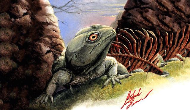 Concetto artistico del Colobops noviportensis (Immagine cortesia Michael Hanson / Yale)