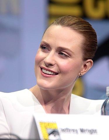 Evan Rachel Wood nel 2017