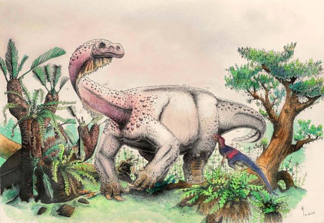 C-14 risalente ossa di dinosauro