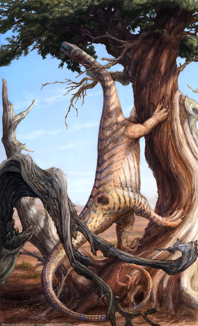 Concetto artistico di Sarahsaurus aurifontanalis (Immagine cortesia Brain Engh)
