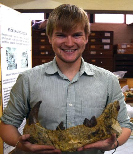 Il Simbakubwa kutokaafrika era un superpredatore che visse in Kenya 22 milioni di anni fa