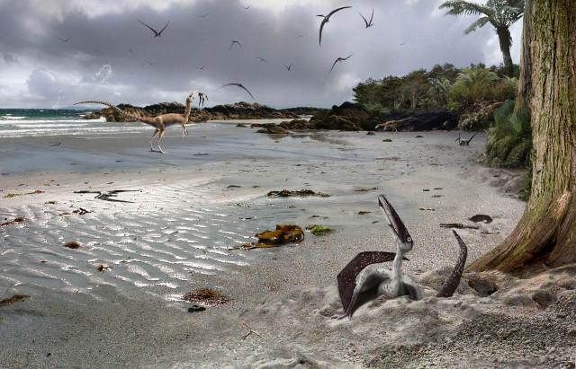 Una ricerca sugli embrioni di pterosauri indica che erano in grado di volare fin dalla nascita