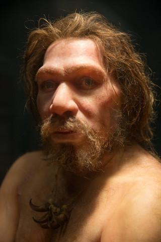 Ritratto artistico di un Neanderthal (Immagine cortesia Petr Kratochvil (CC0))