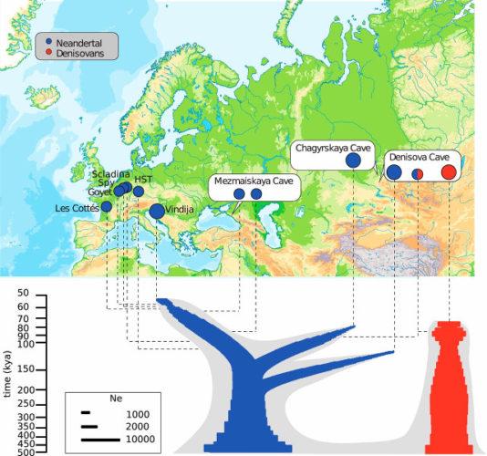 Schema delle parentele tra Neanderthal